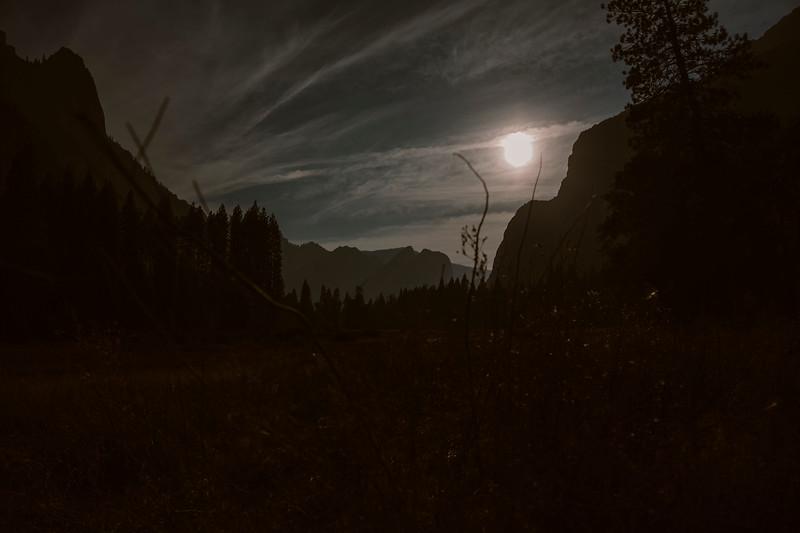 Forest_City_Photographs_Honeymoon_Califonia_San_francisco_Yosimite-164.jpg