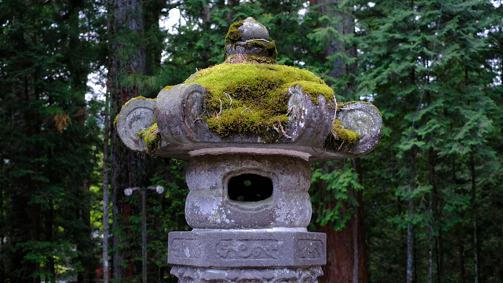 A moss-capped stone lantern at Toshogu Shrine.
