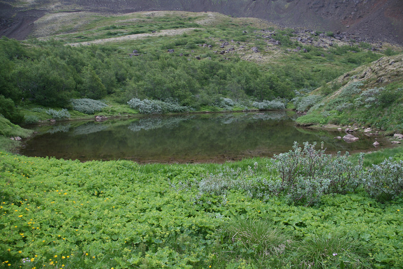 The hike I did near Egilsdaughter.