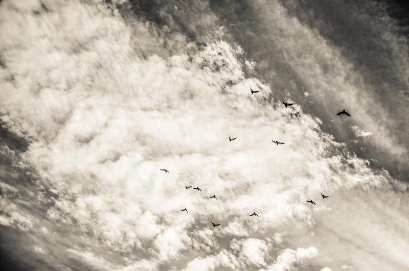 2_The Heavens.jpg