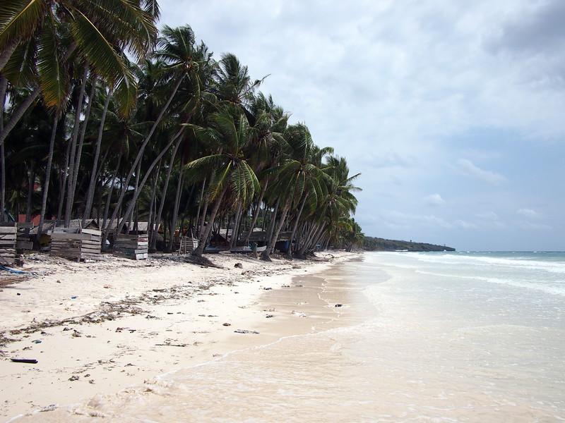 P9109181-east-beach.JPG