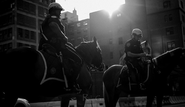 Unsung Heroes: A Photographic Journey of NYPD Mounted Unit Troop B