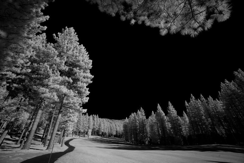 tahoe_588.jpg