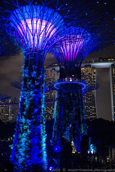 2018-07-18_FunWithFamily@GardensByTheBay_SingaporeSG_70.JPG