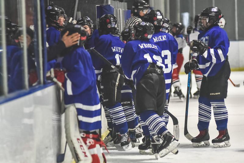 Leafs-51.jpg