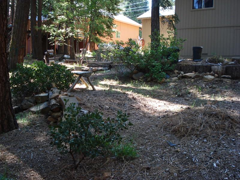 06-06-2015 First Watering Backyard Project (10).JPG