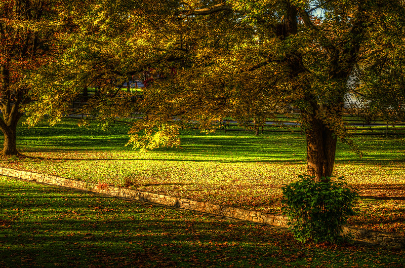 autumn 2014 - ephrata cloister foliage(p).jpg