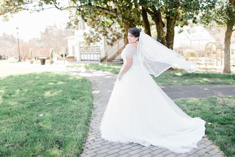 © 2015-2020 Sarah Duke Photography   The Armour House and Gardens at Meadowevent Park in Henrico Virginia Bridal Session   February 24, 2020 Bridal Portrait Session   Published Fine Art Wedding and Portrait Photographer in Virginia