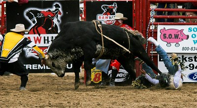 Rodeo Show,  Ridge Town, Ontario 2009
