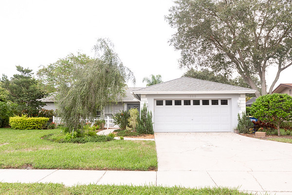 1883 Forest Wood Drive, Safety Harbor, FL 33759 | Dave McCollum