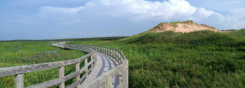 Prince Edward Island Photography 47.jpg