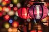 Single Focus Lantern, Hoi An, Vietnam