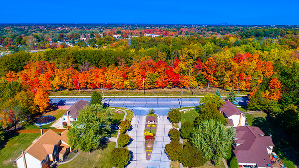Drone Fall Colors