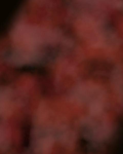 Red Fog.jpg