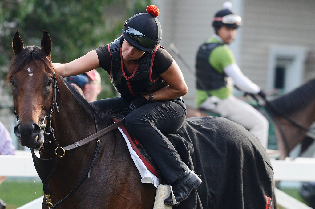 . Exercise rider Jen Patterson sits atop Kentucky Derby winner Orb Aug 19, 2013 after his final major work on the Oklahoma Training Center track in Saratoga Springs, N.Y. Orb will compete in Saturday\'s Travers Stakes at the Saratoga Race Course.Photo Erica Miller/The Saratogian 8/19/13 Orb5