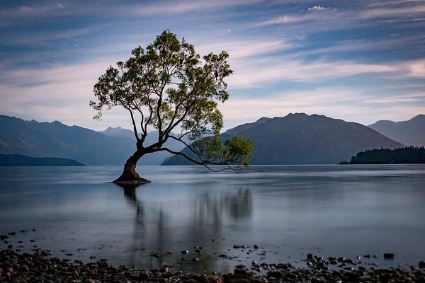 New Zealand Travel Photography