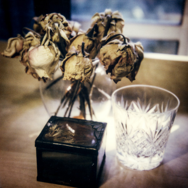 polaroid-glass-flowers026.jpg