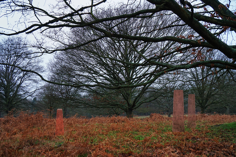 Richmond Park - Virtual Memorials - Covid