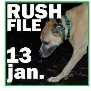 13 JAN. RUSH FILE