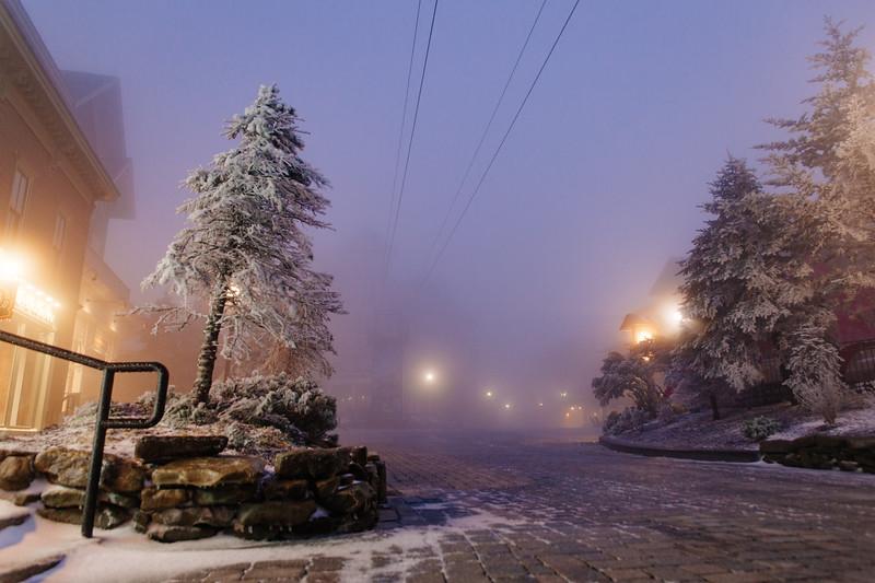 First Snow-3077.jpg
