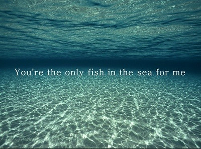 142,fish,love,ocean,words-ce2d535c8bfd60d7ce8c3ba16f4b3781_h_large.jpg