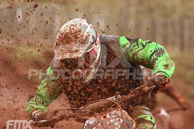 Desert Martin - Irish Championship