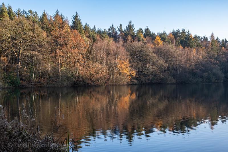 Eavestone Lake-23.jpg