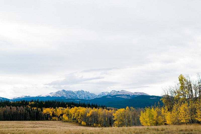 Vail Mountain Retreats