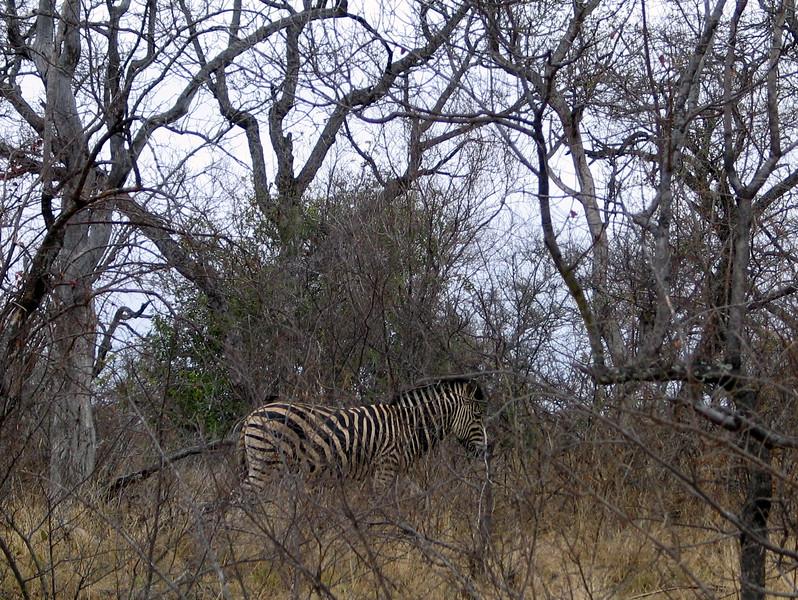 Belule Reserve (10).jpg