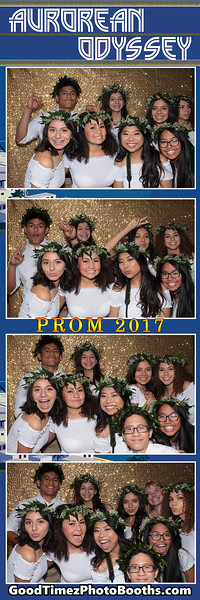 PROM 2017 STRIPS