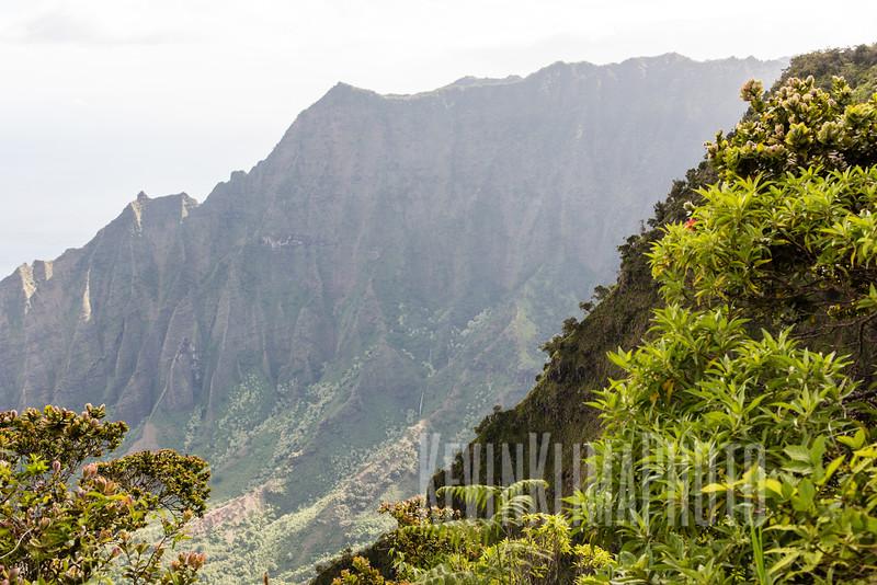 Kauai2017-057.jpg