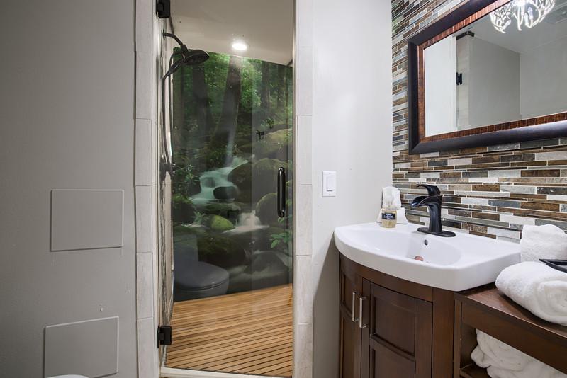 Bathroom Two Divider.jpg