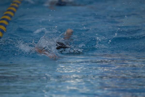 2015 Swimming