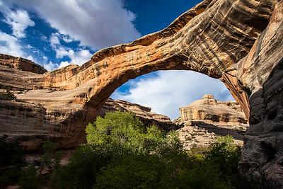 Natural Bridges National Monument Misc.