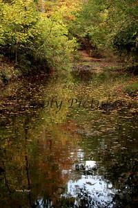 Lanana Creek034