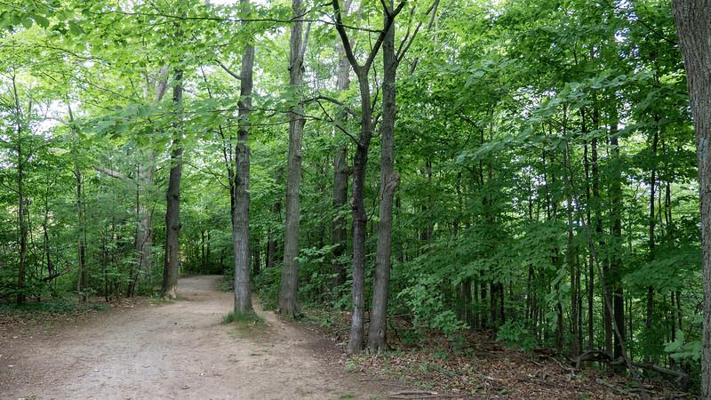 Ontario-Oakville-Sixteen-Mile-Creek-Trail11.jpg