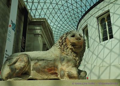 The British Museum & Natural History Museum