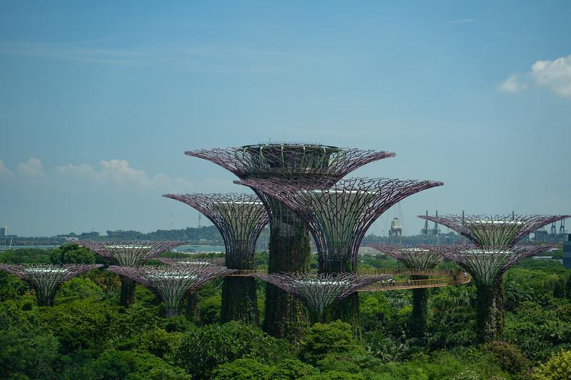 Singapore-19-040.jpg
