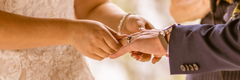 Mehlert-Calkins Wedding