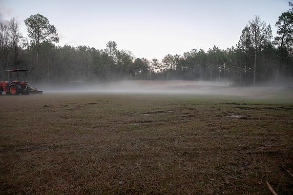 2019-01-12 Yard Fog