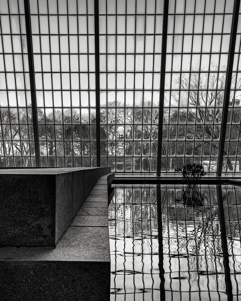 reflections, Metropolitan Museum of Art