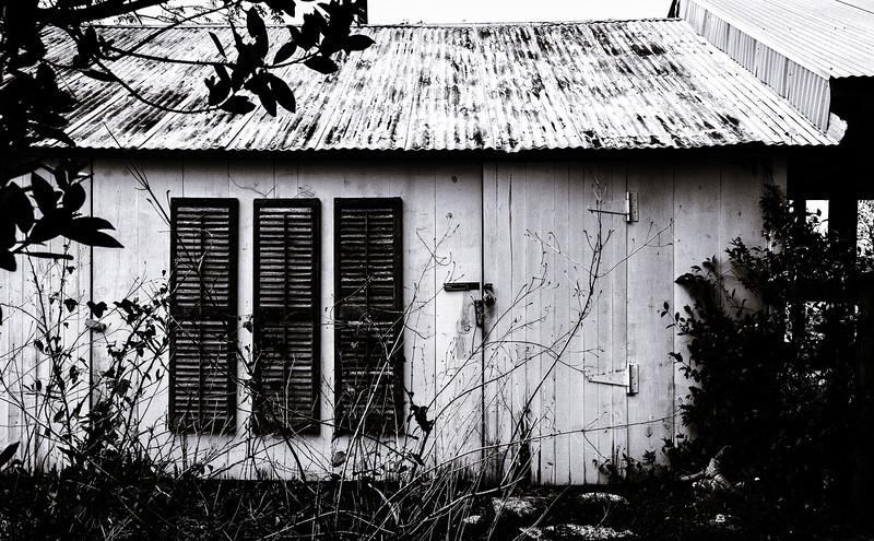 Applewhite House--3.jpg