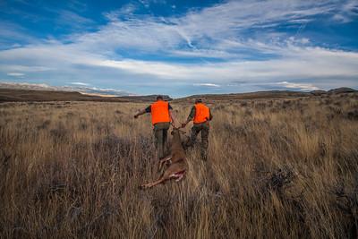 2014 Montana