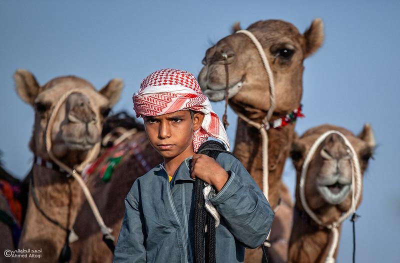 camels (26) copy.jpg