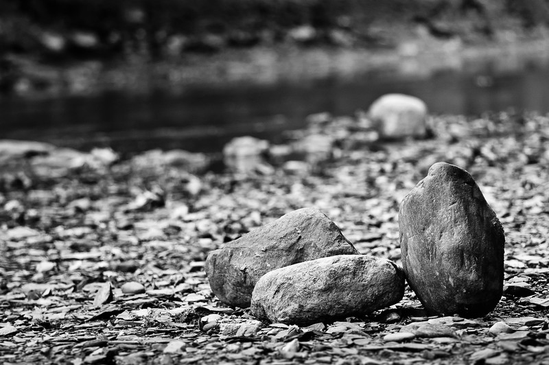20090924_rocky_river_reservation_029bw.jpg