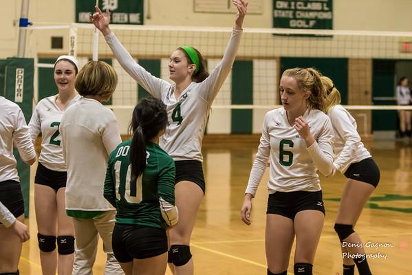 DHS Volleyball senior night 102115-4
