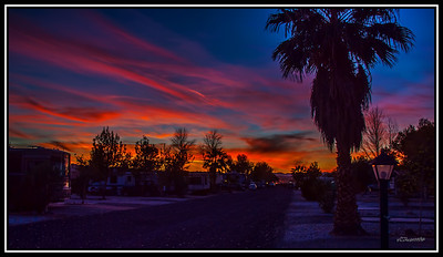 29 Palms RV Resort Photos