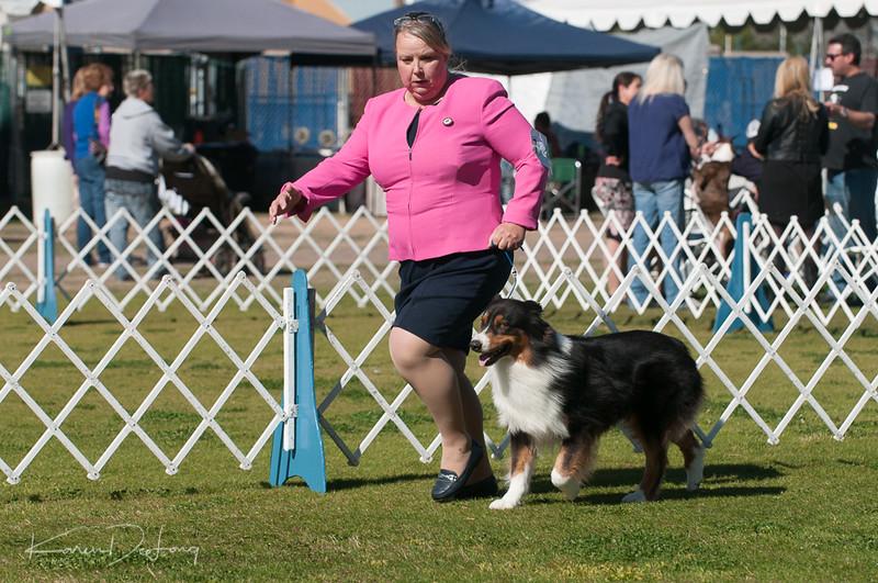 20170205_Australian Shepherds_Lost Dutchman Kennel Club-54.jpg