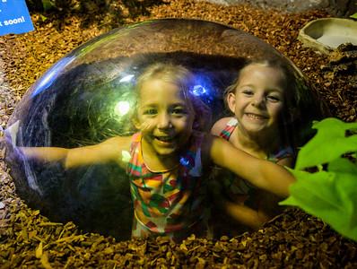 Azzi & Emmy @ Florida Aquarium