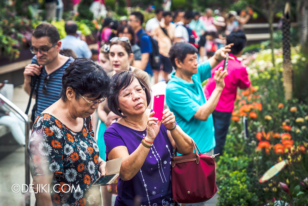 Gardens by the Bay - Tribal Tempo / crowds and flower field
